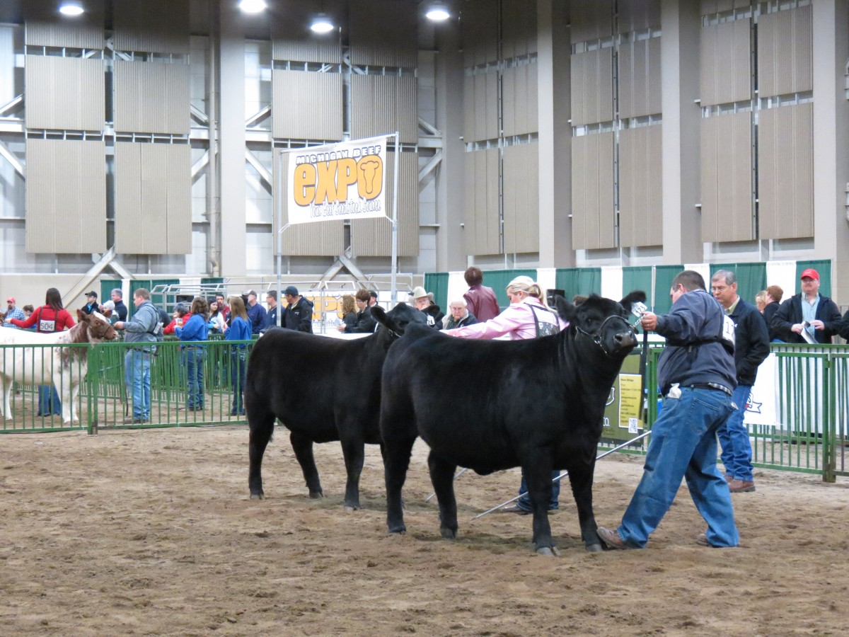 Michigan Beef Expo