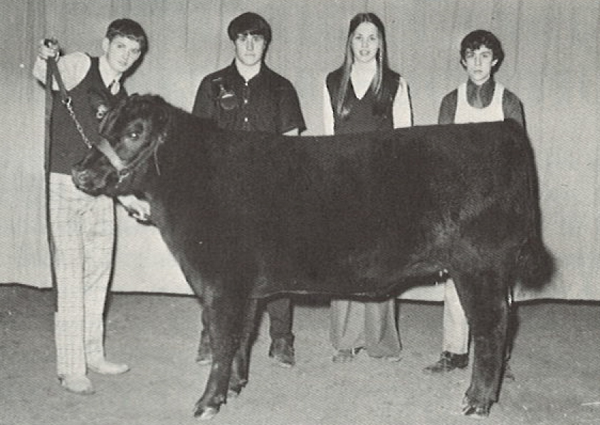 1973 Michigan Showmanship Winners