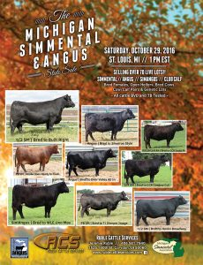 2016 Michigan Angus Fall Sale