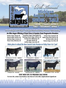 Michigan Angus Futurity Show and Sale