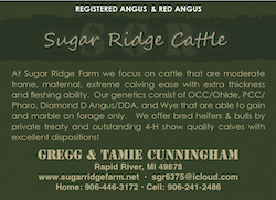 sugar ridge cattle