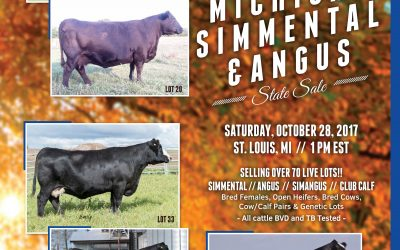 2017 Michigan Angus Fall Sale Catalog