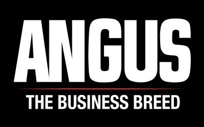 American Angus Association Announces New AngusSource® Programs