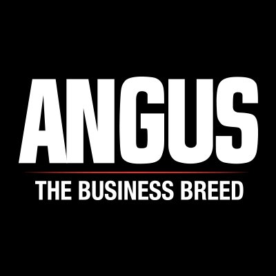 The Ten Michigan Breeders who Registered the Most Angus