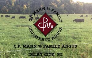 C.P. Mann & Family Angus