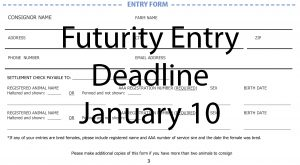 entry form