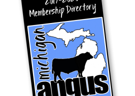 2020 Michigan Angus Directory